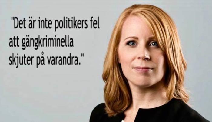 politikers-fel