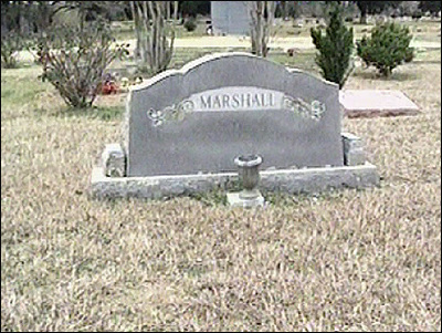 Image result for Henry Marshall+wallace