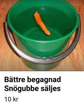 snogubbe