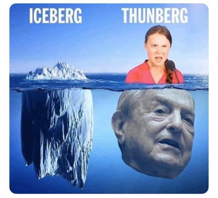 thunberrg