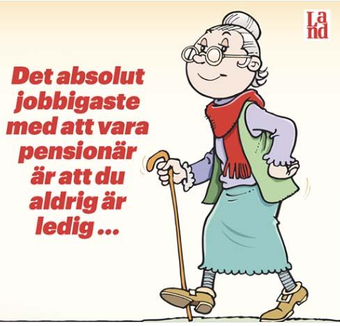 pensionar2