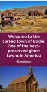 welcome-bodie