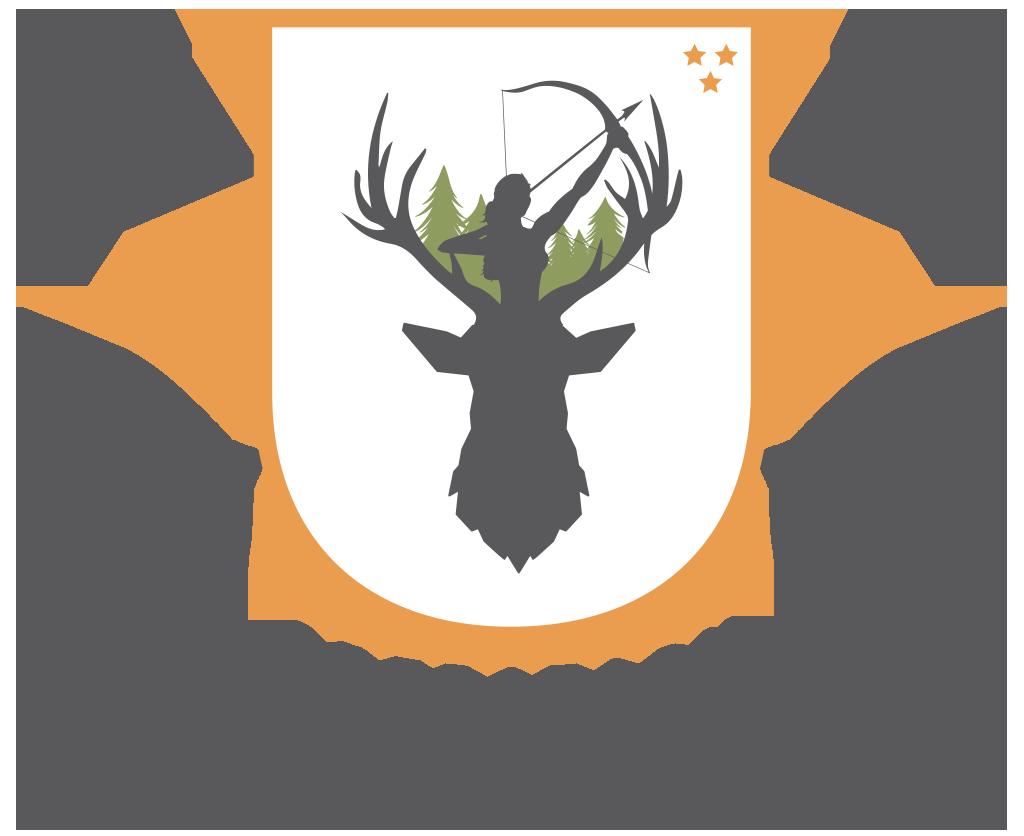 Operation Artemis